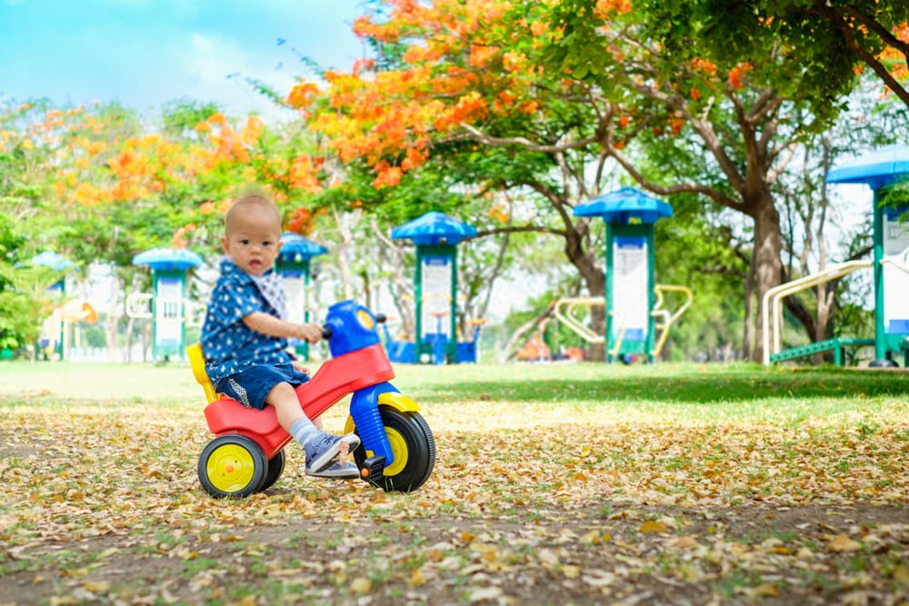 The Fisher-Price DC Kids Tricycle