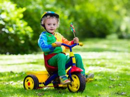 Top 16 Best Tricycles For 4 Year Old Reviews In 2020