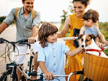 Top 10 Best Dog Bike Baskets Reviews In 2020